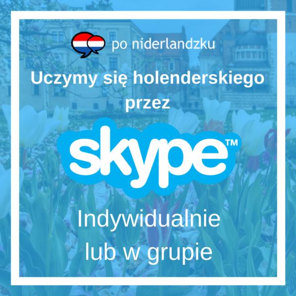 Grafika przedstawiająca lekcje języka holenderskiego przez Skypa.